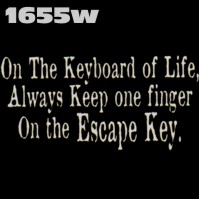 Click to order printed t-shirt 1655w... On the Keyboard of Life, Always Keep one finger On the Escape Key