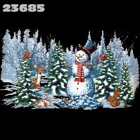 Click to order printed t-shirt 23685... Winter Wonderland (wide print)
