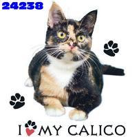 Click to order printed t-shirt 24238... I Love My Calico