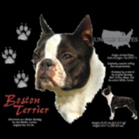Click to order printed t-shirt 30816... Boston Terrier