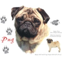 Click to order printed t-shirt 31097... Pug