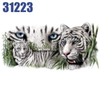 Click to order printed t-shirt 31223... Siberian Tigers