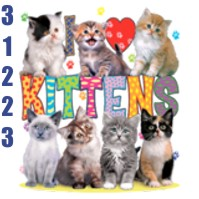 Click to order printed t-shirt 31224... I Love Kittens