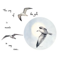 Click to order printed t-shirt 31317... The cry of the gulls is music to my ears.