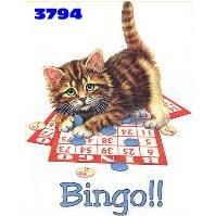 Bingo Kitty