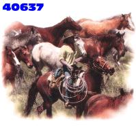 Click here to Order design 40637... Horses. (1st quality t-shirts, sweatshirts, tank tops, baby doll tees, scoop neck tshirts and hooded fleece)