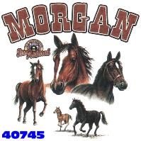 Click here to Order design 40745... Morgan My Favorite Farm Animal. (1st quality t-shirts, sweatshirts, tank tops, baby doll tees, scoop neck tshirts and hooded fleece)