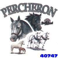 Click here to Order design 40747... Percheron My Favorite Farm Animal. (1st quality t-shirts, sweatshirts, tank tops, baby doll tees, scoop neck tshirts and hooded fleece)