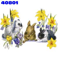 Click to order printed t-shirt 40801... Garden Bunnies (Crystalina Puff)