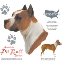 Click to order printed t-shirt 41075... American Pit Bull Terrier