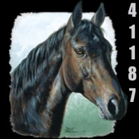 Click to order printed t-shirt 41187... Horse Head