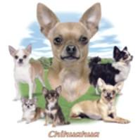 Click to order printed t-shirt 41236... Chihuahua