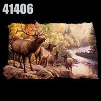 Click to order printed t-shirt 41406... River Walk Elk
