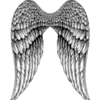 Click to order printed t-shirt 41447... Angel Wings (Back Print)