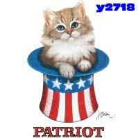 Click to order printed t-shirt y2718... Patriot (Youth Size Print)
